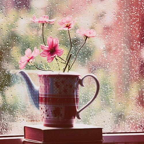 Bahkan bunga pun ikut merasakan aroma HUJAN